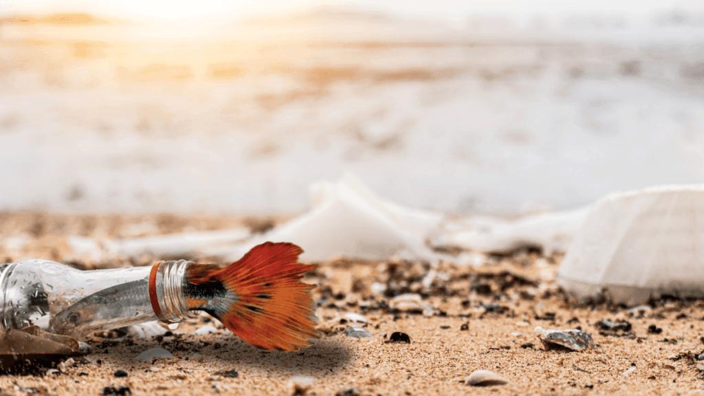 Mikroplastik im Meer